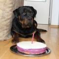 Bad-1-narozeniny
