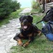 slovensko-dovolena-2012_15