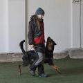 Bochovice-prosinec-2012-03