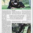 clanek-rtw-Psi-sporty-06-2013-str5