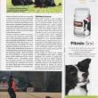 clanek-rtw-Psi-sporty-06-2013-str6