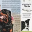 clanek-rtw-Psi-sporty-06-2013-str2